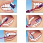La guía esencial para la higiene dental